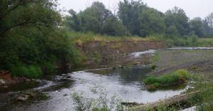Foto-temat: koryto rzeki Białej w Czechowicach-Dziedzicach