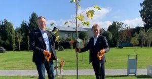 [FOTO] Posadzili platan z okazji 30-lecia partnerstwa z Hiddenhausen