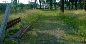 Park Miejski zarośnięty i zaniedbany - list mieszkanki