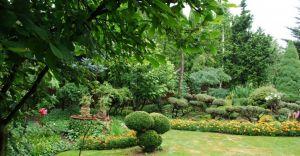 Wybrano najpiękniejszy ogród i dom przyjazny środowisku - zdjęcia