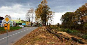 [ZDJĘCIA] Wycinka drzew wzdłuż ulic Zielonej i Kolejowej